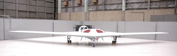 LockMart P-175 Polecat